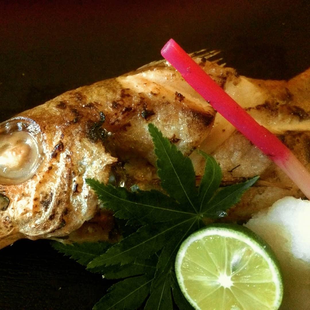 福井県からの美味しい旬の食材。 天然礁による複雑な潮の流れが美味しさの理由!  脂の乗りが良い、のどぐろを塩焼きで召し上がって下さい。